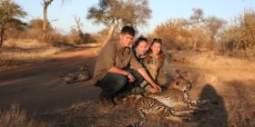 Luipaard aaien in Afrika