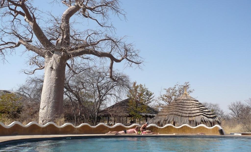 Planet Baobab - Zwembad