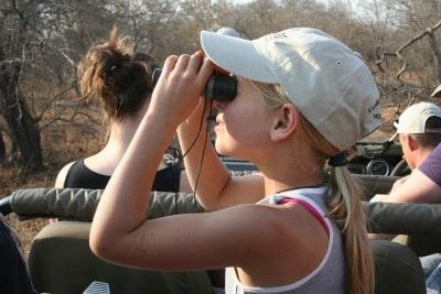 Op safari met jonge kinderen - Meisje kijkt door verrekijker op game drive