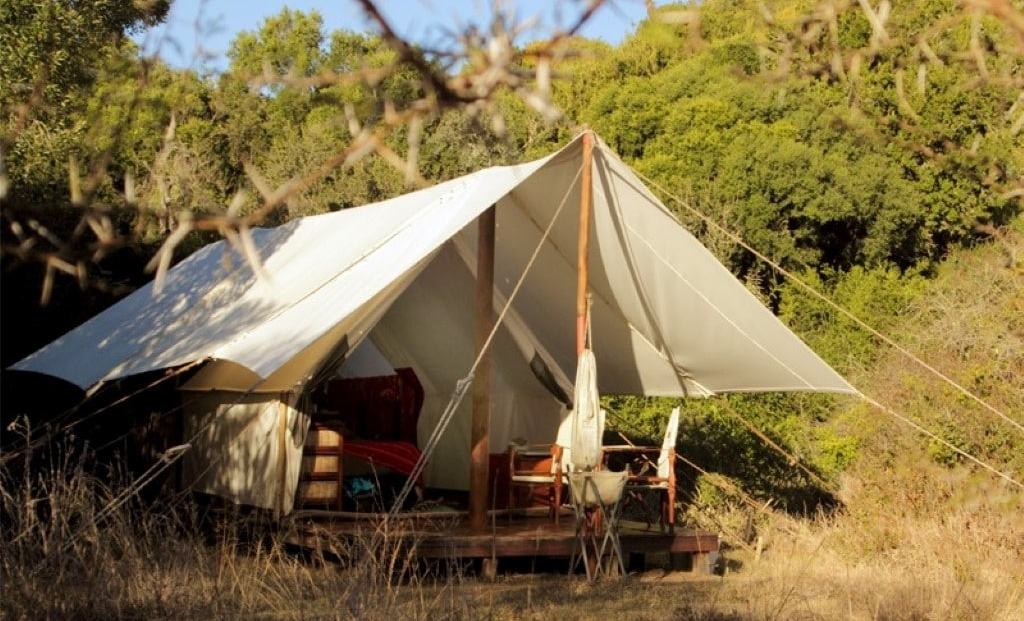 Amakhala Quartermains Camp - tent