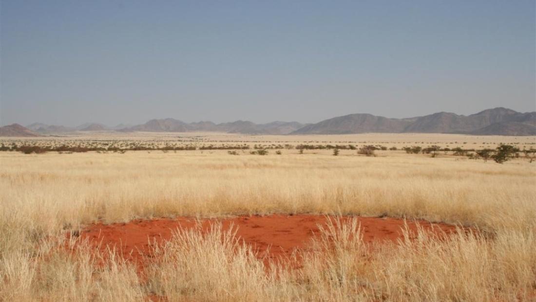 Damaraland - Uitgestrekt landschap
