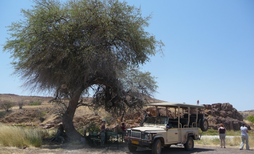 Damaraland - Picknick lunch onder een boom