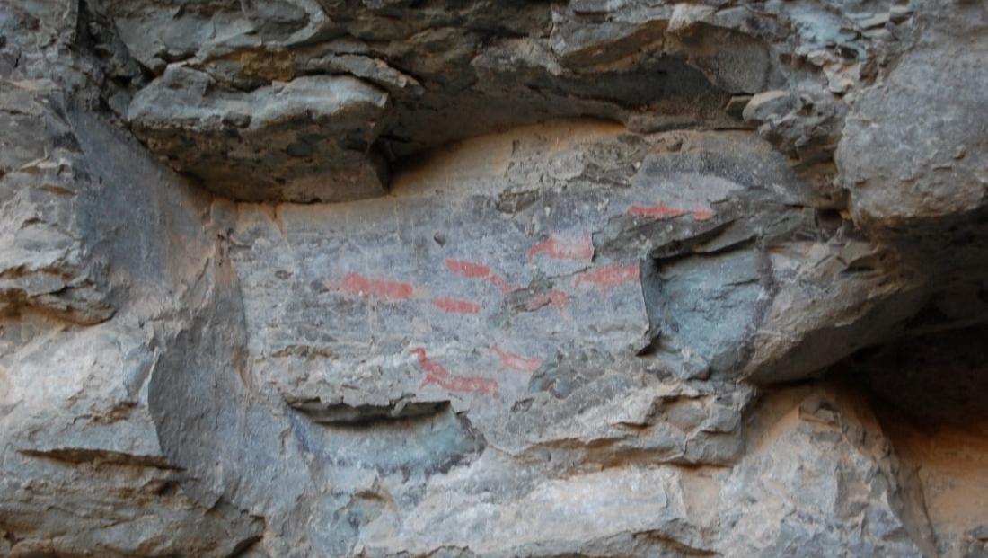 Drakensbergen - rotstekeningen
