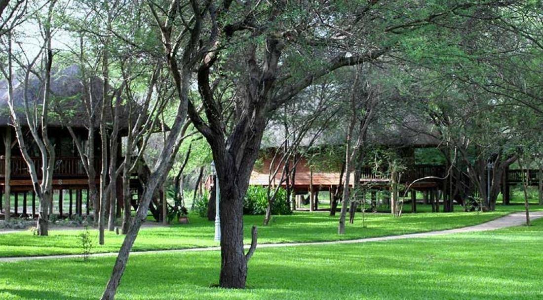 Drotskys Cabins - Huisjes in groene omgeving