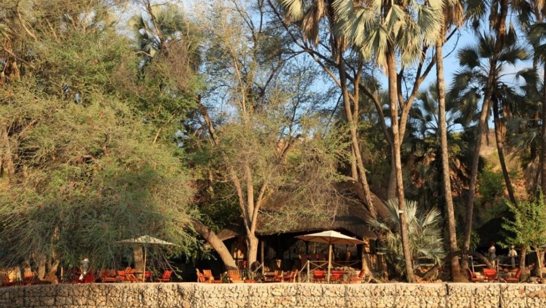 Epupa Camp - Terras met palmbomen