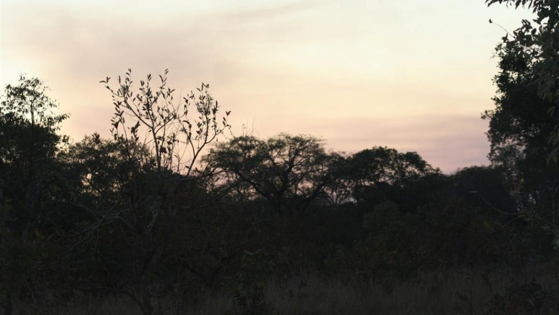 Kafue National Park (19)