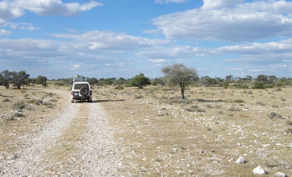 Kalahari - Onverharde wegen door uitgestrekte vlaktes