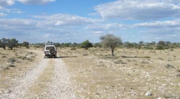 Kalahari (14)