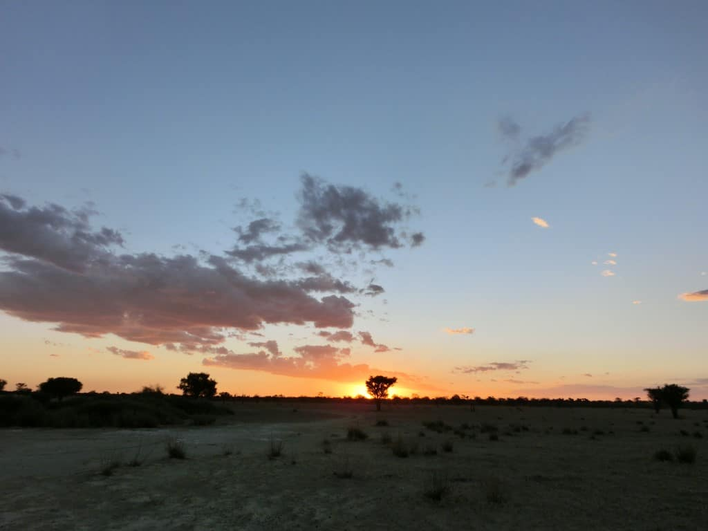 Kalahari - Zonsondergang Kalahari vlakte