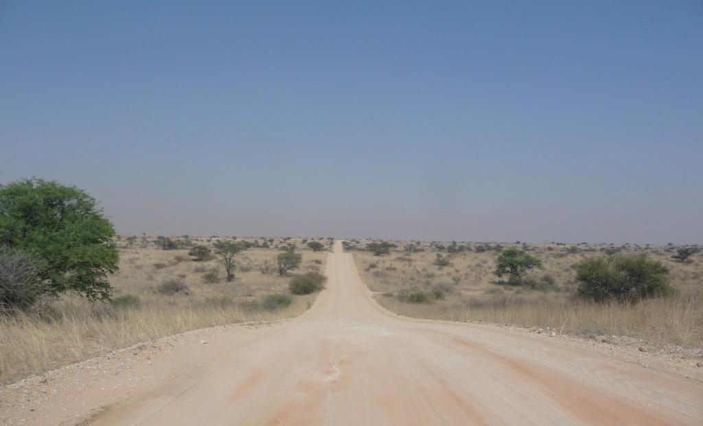 Kgalagadi Transfrontier Park (6)