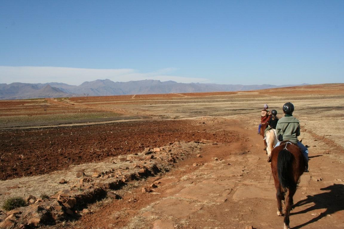 Out in Africa Paardrijden Leostho Reis Vakantie