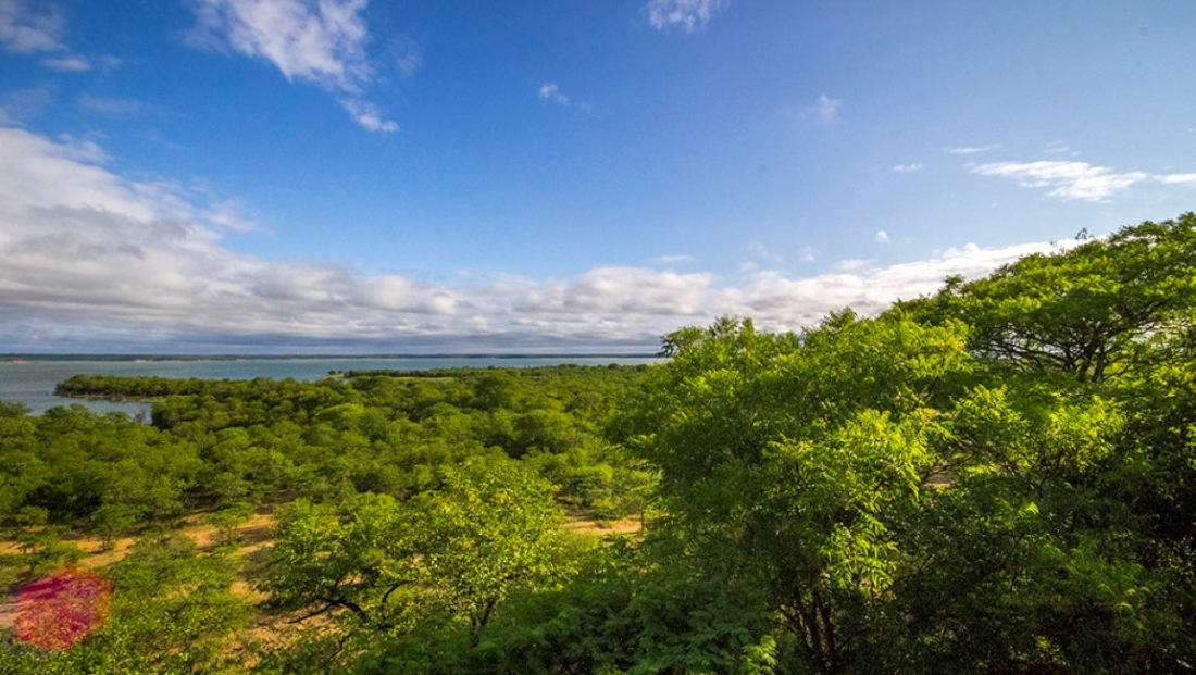 Limpopo National Park - Massingr Dam en bushveld