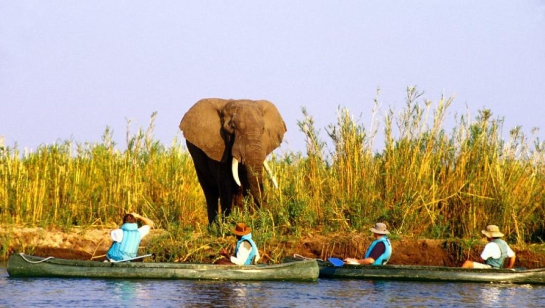 Lower Zambezi National Park (2)