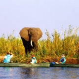 Lower Zambezi National Park (2)