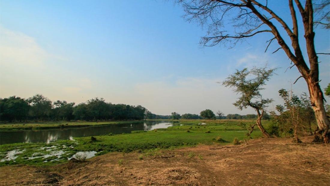 Lower Zambezi National Park (7)