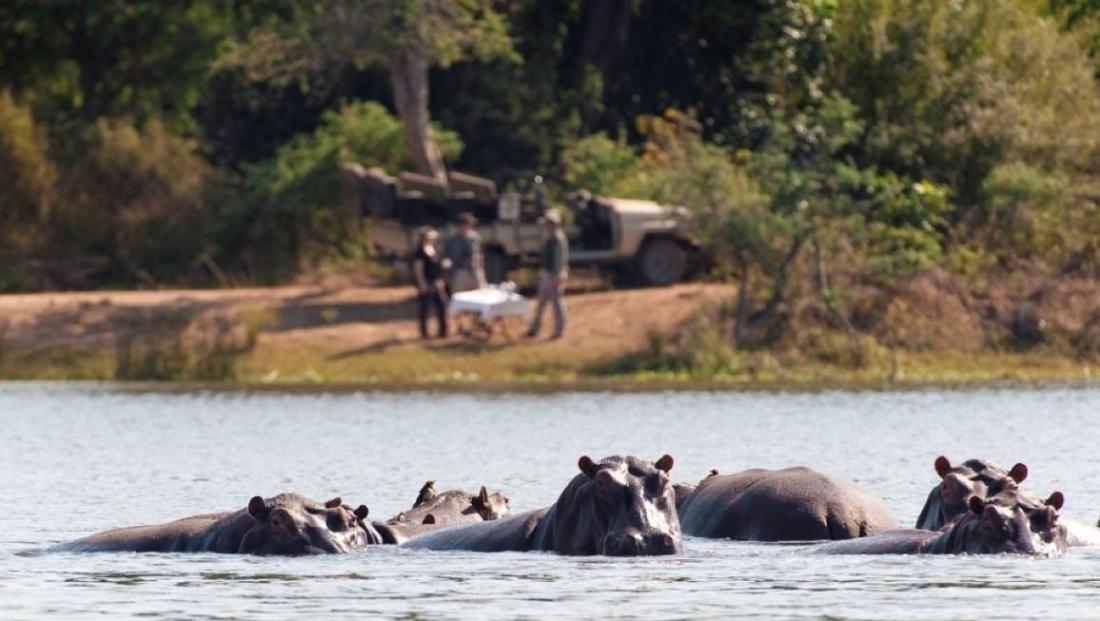Lower Zambezi National Park (8)