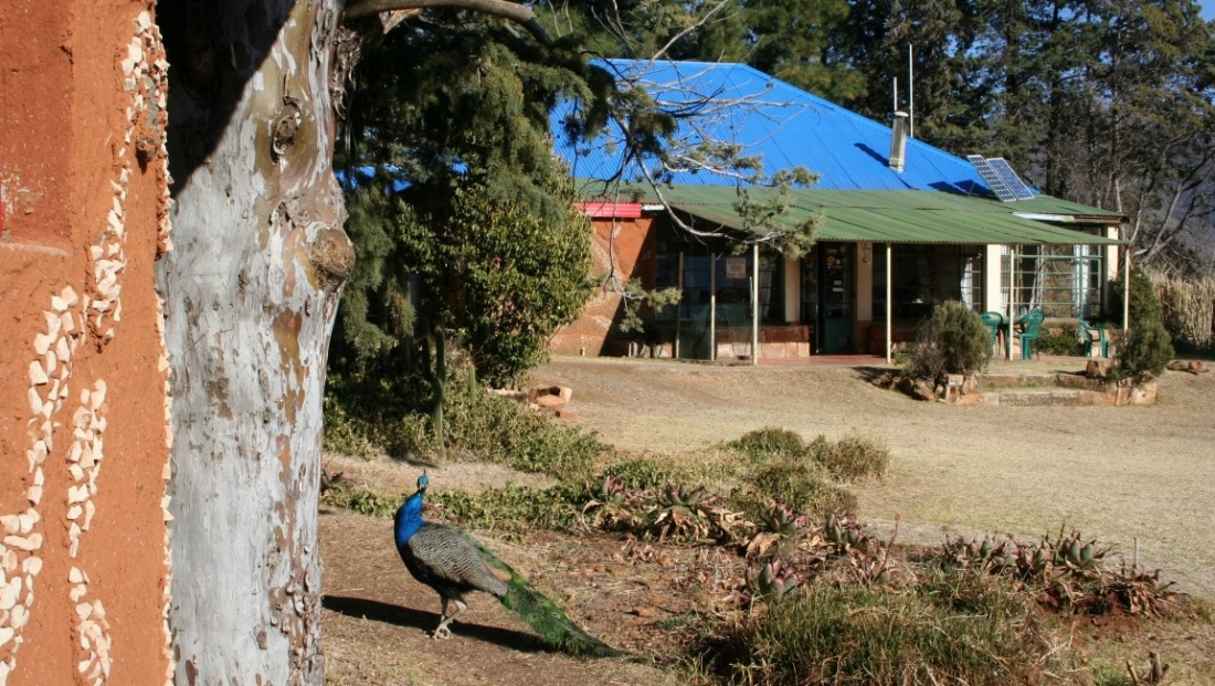 Malealea Lodge (1)
