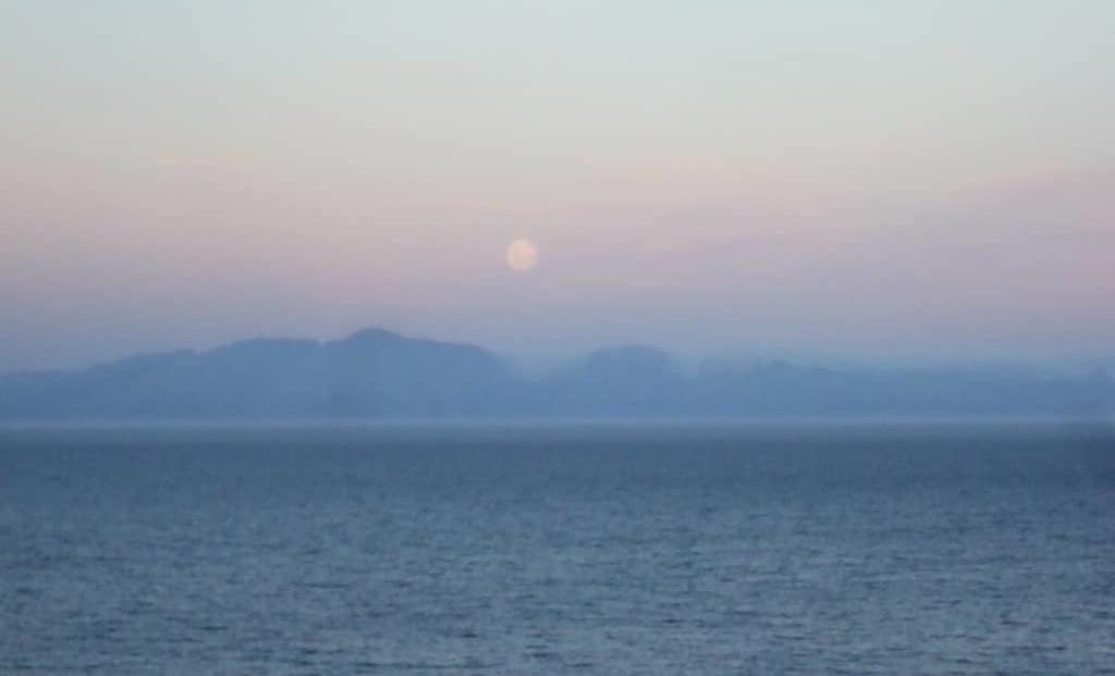 Moonglow (2)
