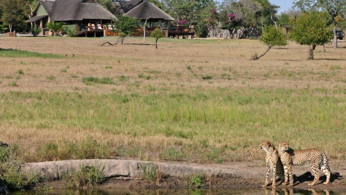 Nkorho Bush Lodge (10)