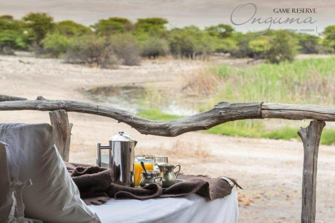 Huwelijksreizen Namibië - Romantisch ontbijt bij Onguma Tree Top Camp