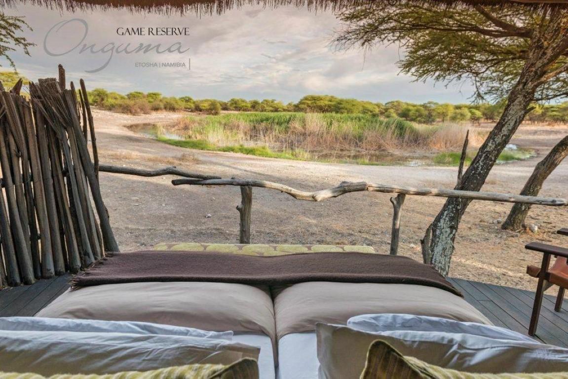 Luxe reizen Namibië - Vanuit uw bed bij Onguma Tree Top Camp uitzicht op de drinkplaats.