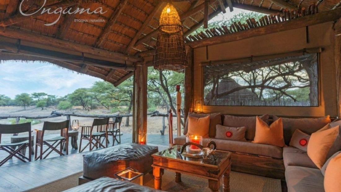 Onguma Tree Top Camp - lounge