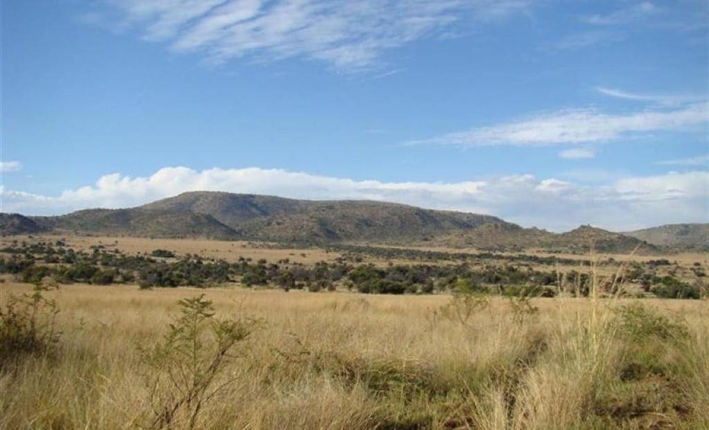 Pilanesberg NP -b (1)