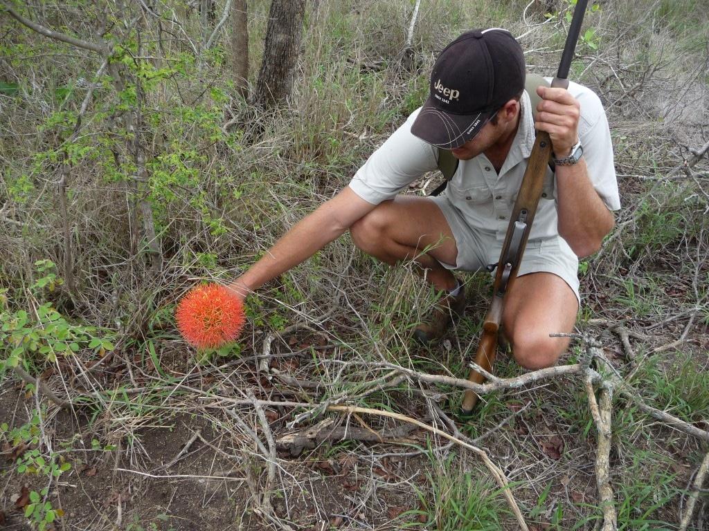 Nieuwsbrief Out in Africa - op pad met de Big 5, wandelsafari, kleine dingen in de bush