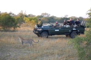 Prive Safari (16)