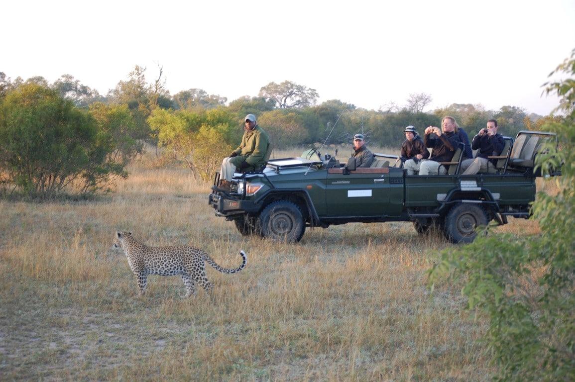 Safari & Natuur reizen Afrika - Wildritten met gids, luipaard voor voertuig
