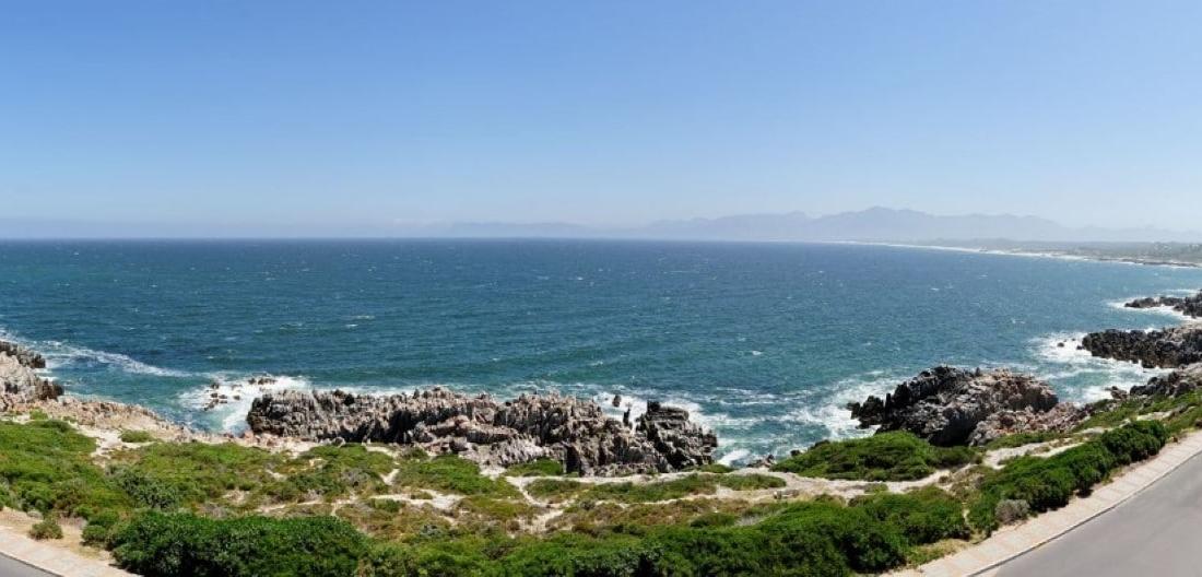 Sea Star Cliff (15)