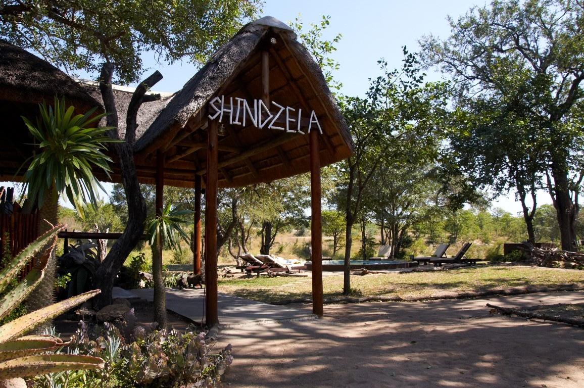 Shindzela (9)