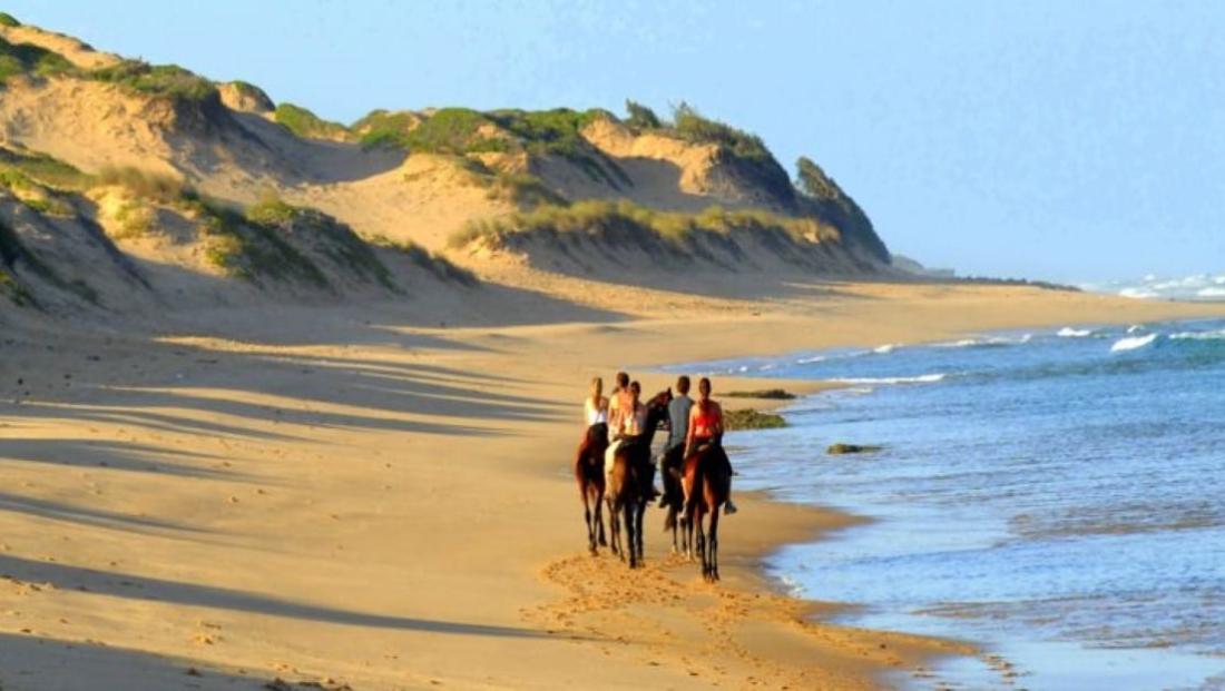Mozambique - Paardrijden op het strand