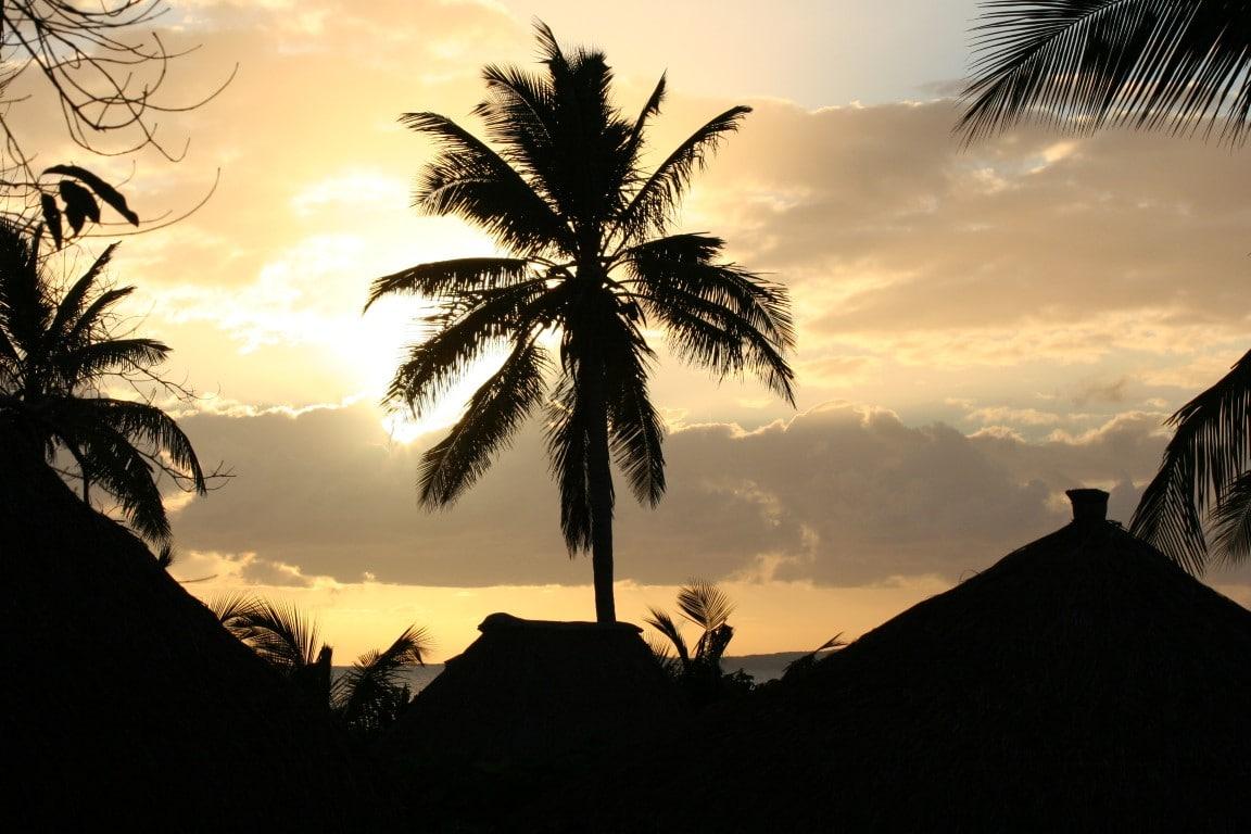 Rondreizen vakanties Mozambique - Palmboom bij ondergaande zon achter de wolken