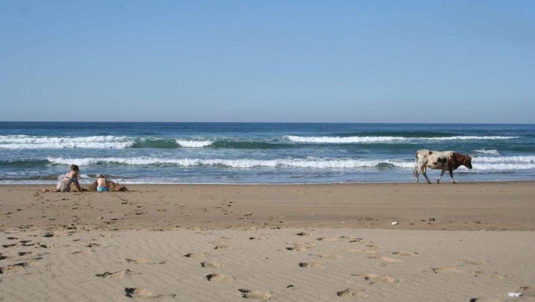 Strand Zuid-Afrika (3)