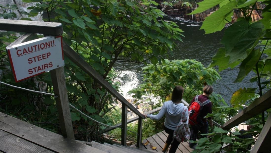 Tsitsikamma National Park (9)