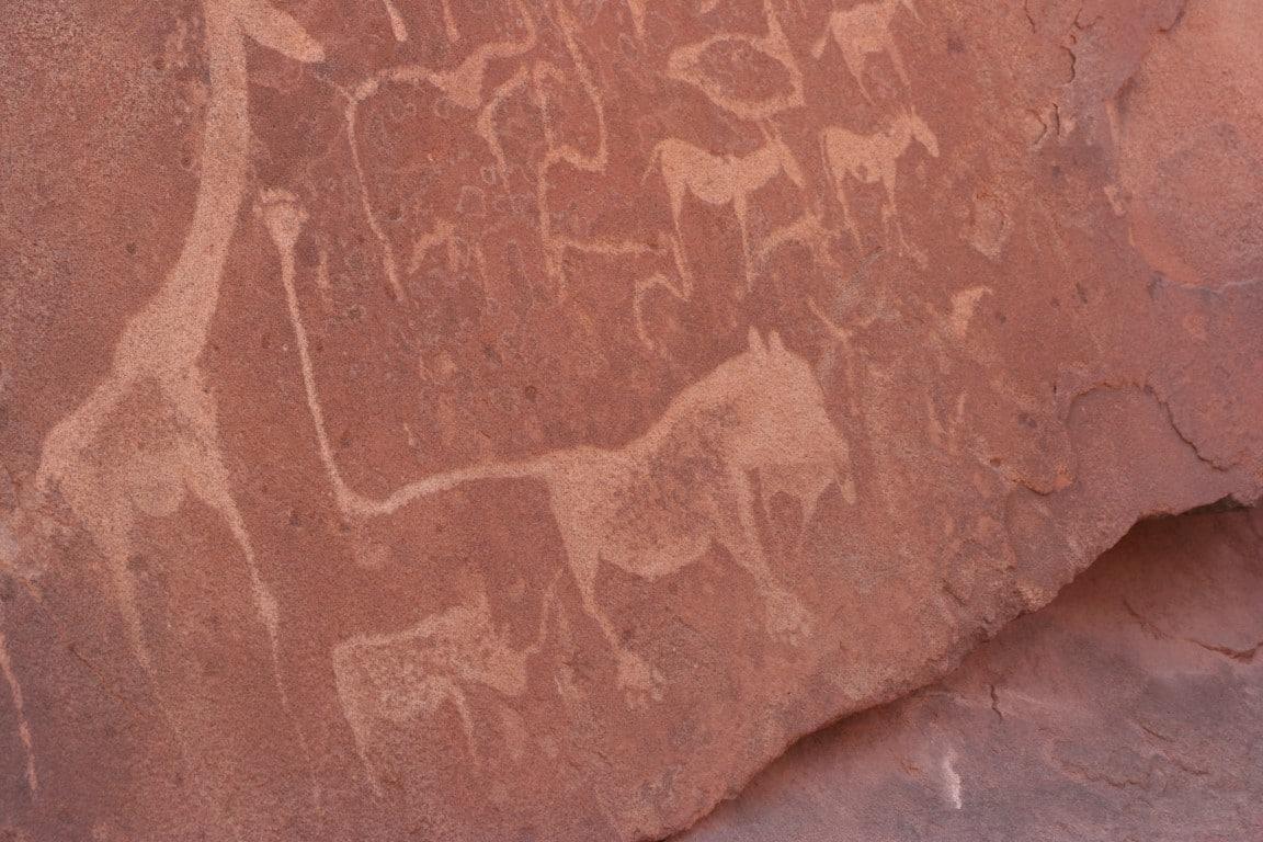 Twyfelfontein gebied - rotstekening dieren