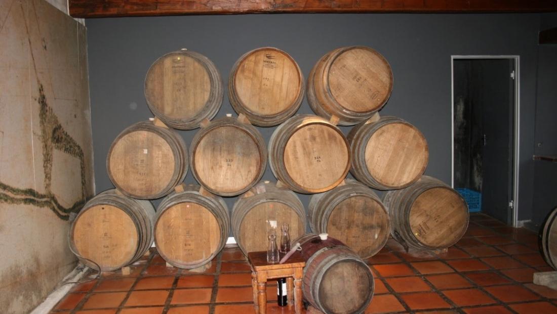 Wijngebied (4)