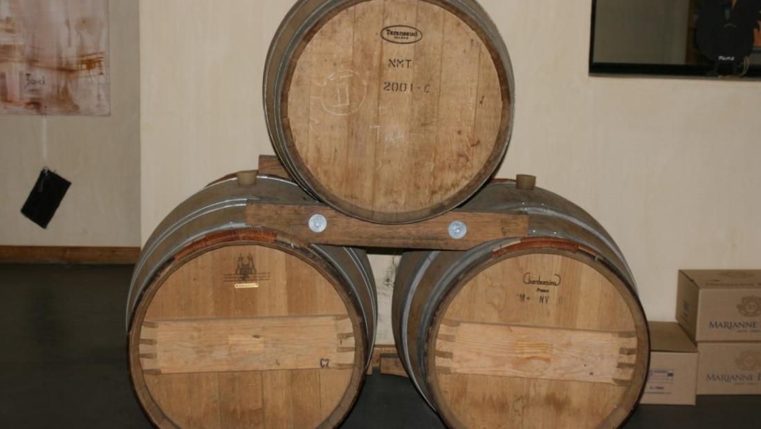 Wijngebied (8)