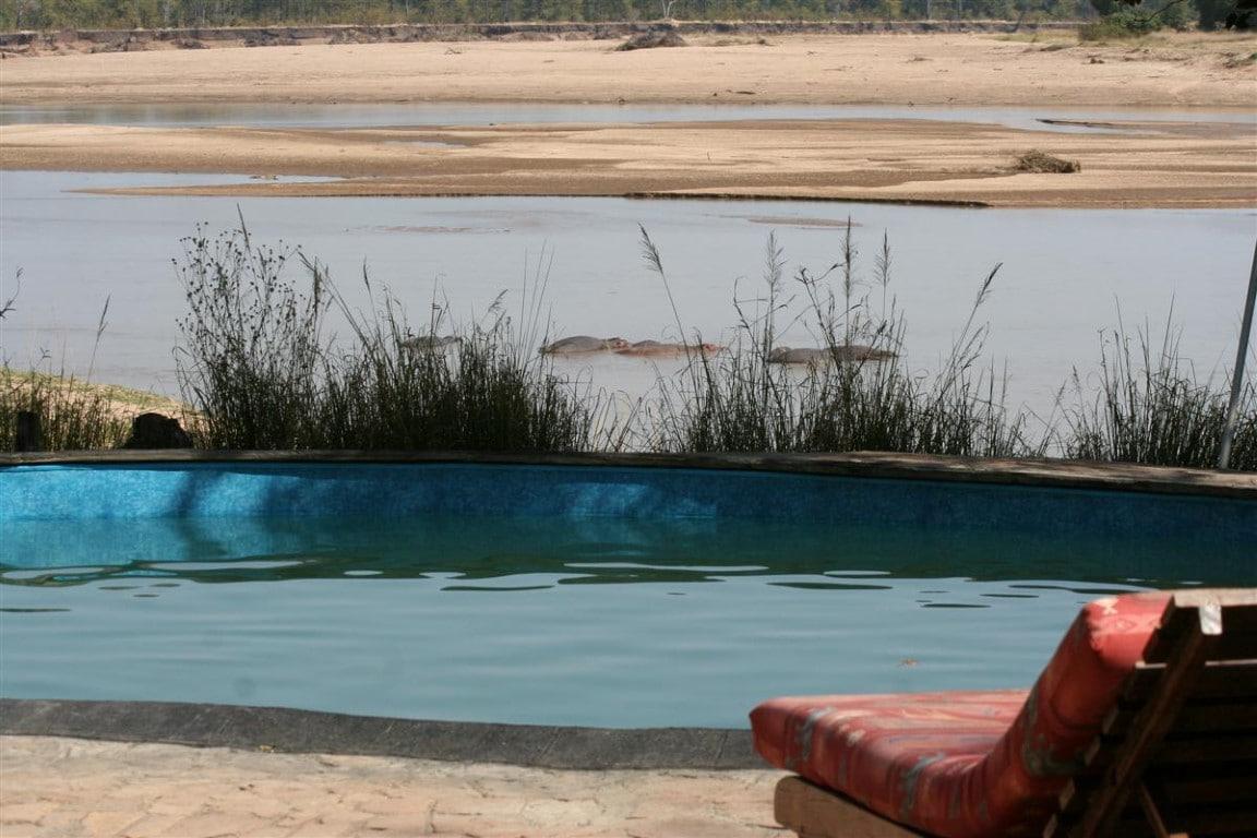 Safari Reizen Zambia - Zwembad Wildlife Camp, South Luangwa National Park
