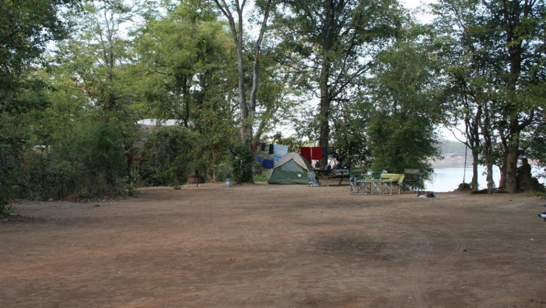 Wildlife Camp (15)