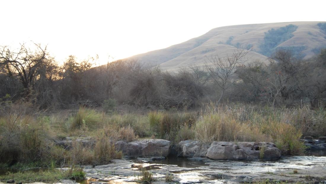 Zululand (1)
