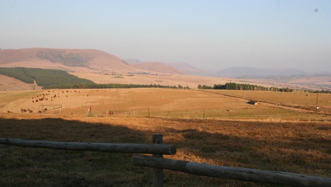 Zululand (4)