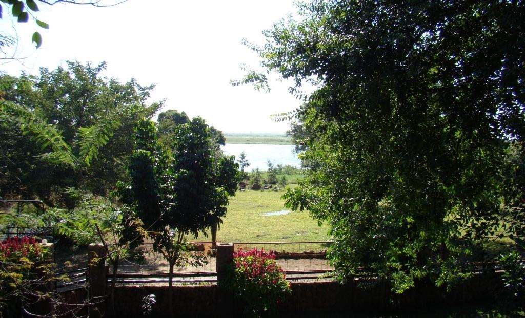 Waterlilly Lodge - Uitzicht op de Chobe rivier vanuit de tuin