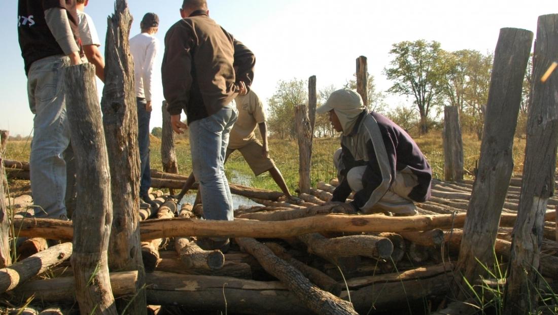 Bushways - Helpen bij brug bouwen