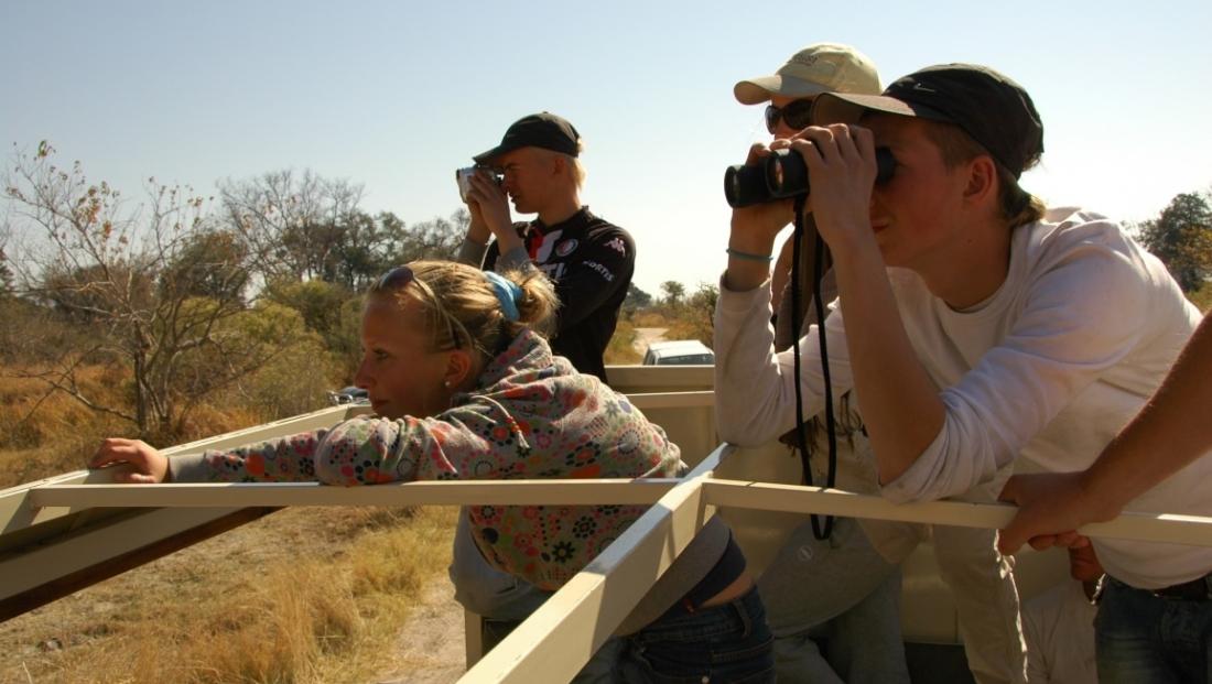 Bushways - Open dak voertuig, dieren kijken