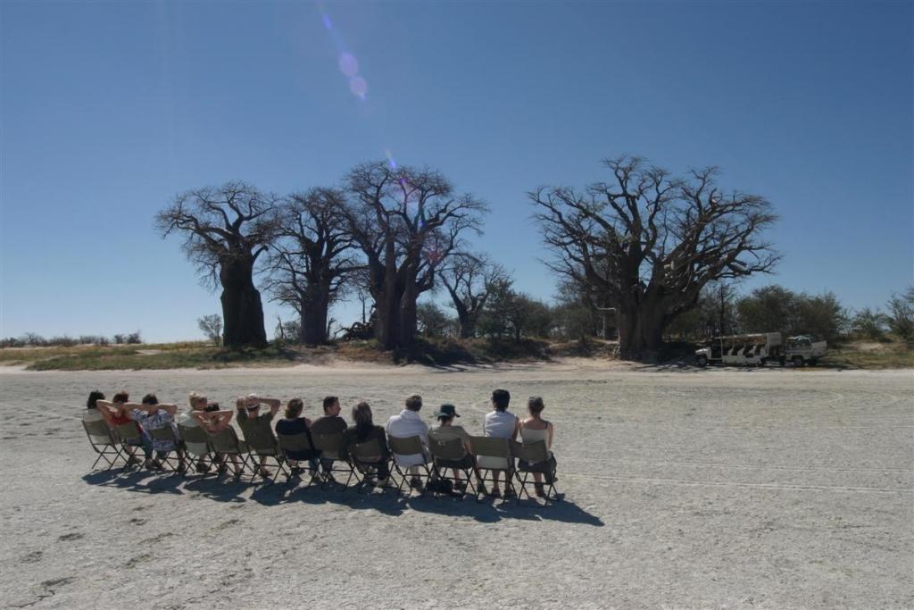 Nieuwsbrief Out in Africa - Bomen Bush Ways, plastic flessen, groepskampeersafari's, mobile safaris, botswana, kamperen, groepsreis