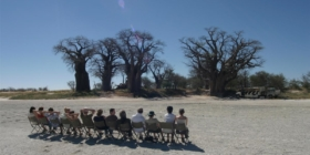 Bushways - Uitzicht baobab bomen