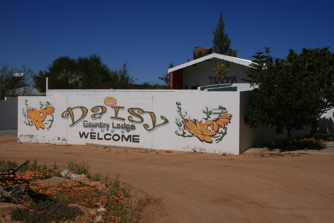 Daisy's Guest Farm - Entree