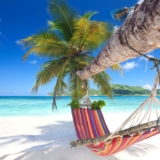 Seychellen Strand - hangmat op het strand
